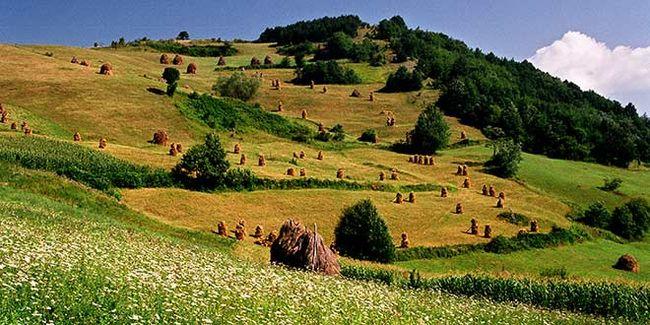 Foto: sajt opštine Osenčina