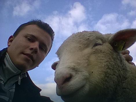 Kupio je 50 ovaca i dobio povraćaj 30 odsto ulaganja, foto: Stefan Jovanović / Privatna arhiva