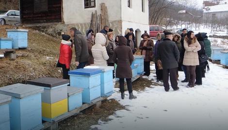Dodeljeno po deset košnica ženama sa ruralnog područja, foto: B. Bojović / RAS Srbija
