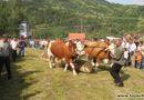 Seoski višeboj u Jablanici predstojećeg vikenda