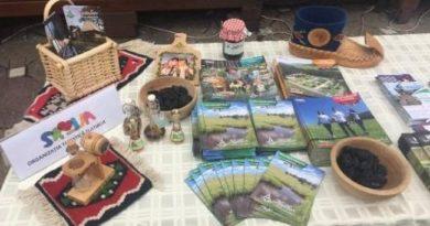 Raznovrsna turistička ponuda Zlatibora predstavljena u Temišvaru