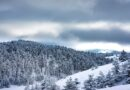 Mesto zimskih čarolija: Dođite i uverite se zašto je Zlatibor više od planine