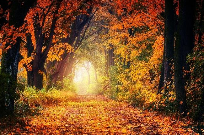 Još danas toplo, za vikend stiže jesen