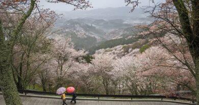 Varljivo i u aprilu – kiša i pad temperature