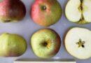 Zdravije su stare sorte voća