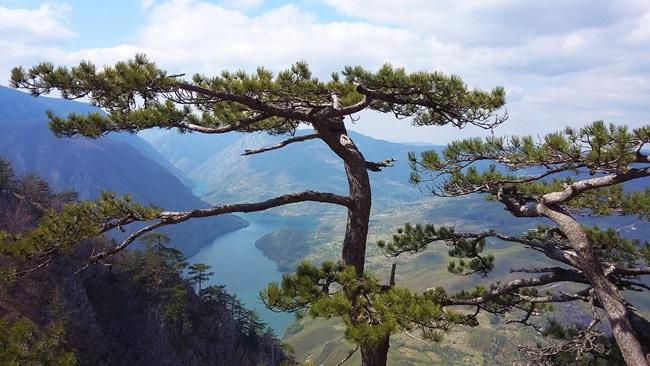 Srpska planina i hrvatske pećine u zajedničkom projektu